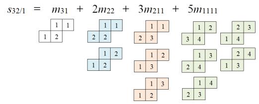 skew_schur_polynomial_example